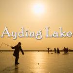 Ayding Lake, CHINA, Turfan | 中国トルファンのアイディン湖 | ئايدىڭكۆل